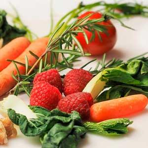 dietetica y nutrición las rosas madrid